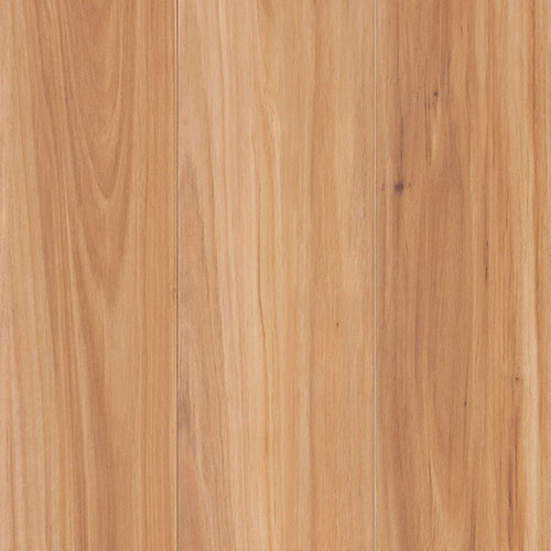Blackbutt AC4 12mm