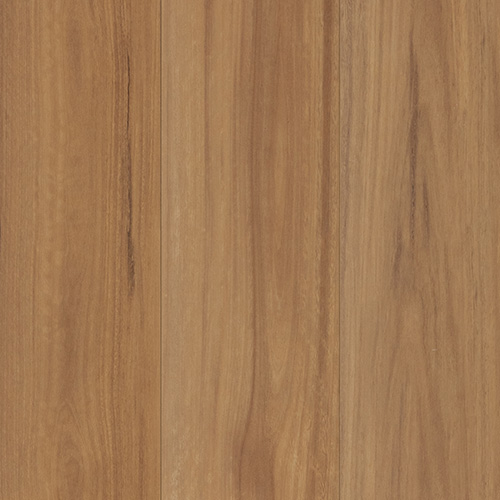 Spotted Gum AC4 12mm