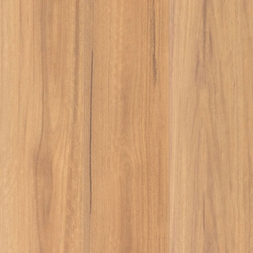 Spotted Gum Matte AC5 12mm